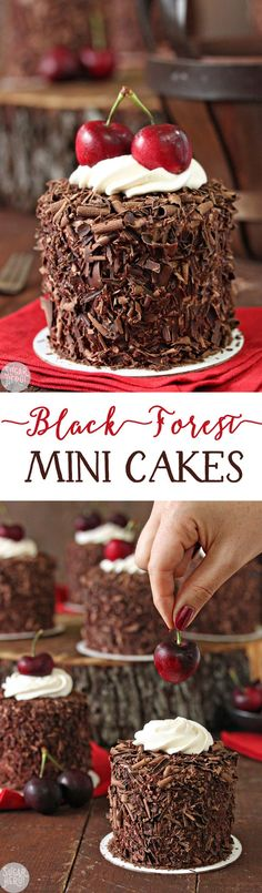 Black Forest Mini Cakes - adorable chocolate-cherry cakes, with a fresh cherry on top! | From SugarHero.com Just Desserts, Delicious Desserts, Yummy Food, Autumn Desserts, German Desserts, Mexican Desserts, Light Desserts, Baking Recipes, Cake Recipes