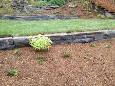 Un zoom d'un jardin avec un mur bas