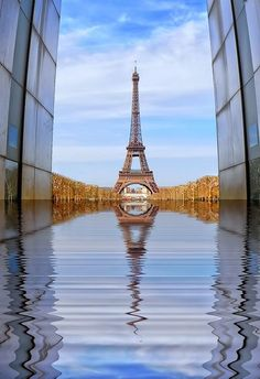 I love this shot of the Eiffel Tower, Paris. I think it was taken from the Peace wall at the end of Champs de Mars