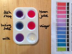 Red cabbage dye (and pH indicator) Cabbage Juice, Red Cabbage, Sour Foods, Acid Base, Cabbage Leaves, Painted Trays, Ice Cube Trays, Parts Of A Plant, Plant Species