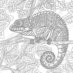 Adult Coloring Pages. Chameleon. Zentangle Doodle Coloring Book Page for Adults. Digital illustration. Instant Download Print.