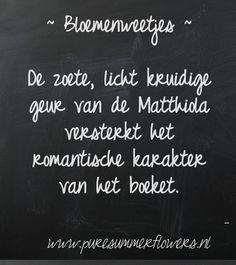 Bloemenweetjes. Matthiola.     This quote courtesy of @Pinstamatic (http://pinstamatic.com)