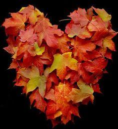 heart of Autumn