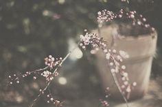 untitled by MaureenduLong on Flickr.