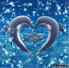 Beautiful Nature Wallpaper, Beautiful Gif, Animals Beautiful, Cute Animals, Orca Art, Dolphin Art, Cute Galaxy Wallpaper, Bubbles Wallpaper, Happy Birthday Pug