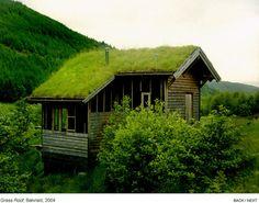 Balvraid, grass roof.