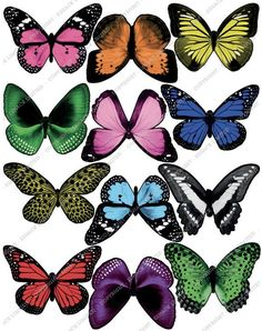Cakeshop 12 x PRE-CUT Light Pink Edible Butterfly Cake Toppers >>> Remarkable product available : baking decorations Butterfly Cakes, Pink Butterfly, Art Papillon, Best Edibles, Butterfly Wallpaper, Butterfly Artwork, Edible Cake Toppers, Decorating Tools, Beautiful Butterflies