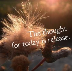 """DAY 63 Apr. 2: The thought for today is RELEASE. A Sufi proverb says """"when the heart weeps for what it has lost, the spirit laughs for what is found."""" Release the weight of your past, the judgments..."""