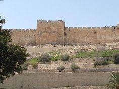 The ancient city walls of Jerusalem William The Conqueror, Holy Land, Queen, 16th Century, Jerusalem, Middle Ages, Mount Rushmore, Medieval, England