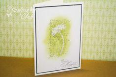 _DSC7102 Stampin Up Karte Trauerkarte Kondolenz Reason to Smile French Foliage Mit tiefstem Mitgefühl Emboss Resist