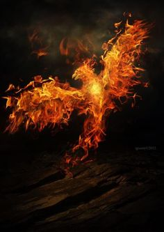 The phoenix hope, can wing her way through the desert skies, and still defying fortune's spite; revive from ashes and rise.     Art by http://igreeny.deviantart.com/