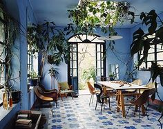 Bright blue foyer-gone-greenhouse with potted plants and trees and vines climbing in through the windows.
