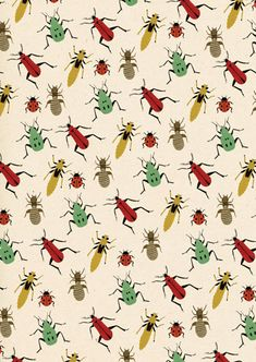Primavera bicho mariquita escarabajo