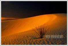 Sweet Light on Sand (White Sands National Monument, New Mexico) © Rick Braveheart