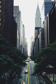 "envyavenue: "" Concrete Jungle. "" More"