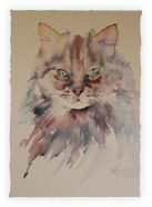 The Magic of Watercolour Painting Virtual Gallery - Jean Haines, Artist - Cats and like OMG! get some yourself some pawtastic adorable cat apparel! Watercolor Animals, Watercolour Painting, Painting & Drawing, Painting Abstract, Watercolours, Chiaroscuro, Virtual Art, Online Painting, Cat Drawing