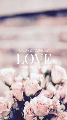 Rose Love #wallpaper #fondos #edit :evaxo♔