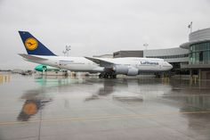 Lufthansa-747-8.jpg (1600×1066)