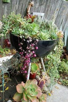 Express your creativity in your garden creating unique repurposed garden containers! You can make fantastic garden containers with old items you already have around the house. Replacing the boring pots with some creative garden containers will make Succulent Gardening, Cacti And Succulents, Garden Planters, Planting Succulents, Container Gardening, Planting Flowers, Diy Garden Bed, Garden Trellis, Garden Cottage