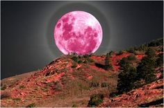 4/6 was the Pink Full Moonrise @ 12:19 PM PST / 3:19 PM EST / 7:19 PM GMT/UT.
