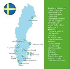 Hundestrände Schweden Rhodesian Ridgeback, Dog Travel, Strand, Chart, Map, Dogs, Dog Things, Sweden, Travel Advice