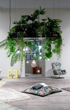 lush plants hanging combined with Designer pendant lights