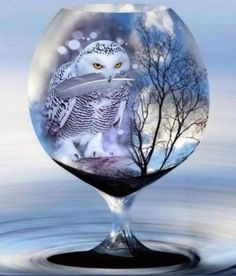 And he brought me this gift, a white feather, a memory of you. Glass Photography, Creative Photography, Nature Photography, Gothic Wallpaper, Globe Art, Owl Art, Fractal Art, Art Pictures, Photos
