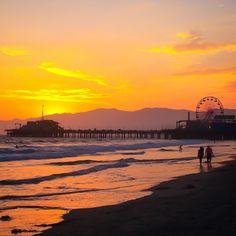48 Best California Legal Help images in 2018 | California, Avocado