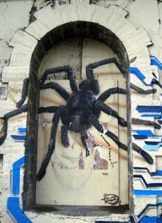 Spider - Street art in St-Denis, Reunion Island