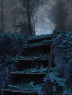 I would love to wander here...