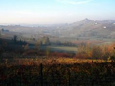 Autumn  in  Monferrato  3 by  luigi  rabellino