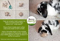Fun little do-it-yourself rabbit toy.