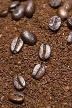 Coffee!!!! 1. Anti-Cellulite Exfoliating Coffee Scrub!! 2. Get rid of unwanted hair. For 1 week, rub 2 tbsp coffee grounds mixed with 1 tsp baking soda. The baking soda intensifies the compounds of the coffee breaking down the hair follicles at the root To not have to shave your legs would be awesome!