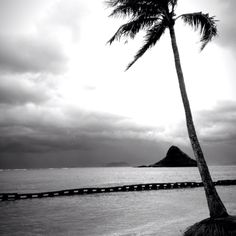 North Shore Honolulu