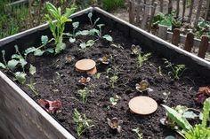 Stress Mit Giessen War Gestern Garten Hochbeet Bewasserung Garten Und Garten