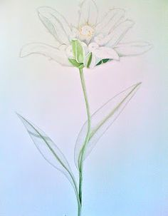 Sally Arnold ®: *bhlo- Details of pencil crayon drawings