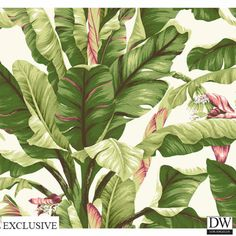 Ono Island Banana Leaf Wallpaper  [TRF-56834] Vacation in the Tropics | Color…