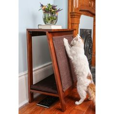high end cat bed | Frame Cat Bed, Cat Scratcher & End Table - 18644115 - Overstock.com ...