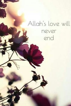 Allah's love :)