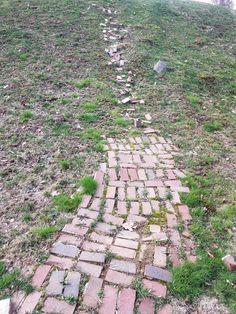 Brick stairway that is slowly being destroyed by erosion over the years. Sci Fi Fantasy, Destruction, Stairways, High Quality Images, Over The Years, Stepping Stones, Brick, Outdoor Decor, Photography
