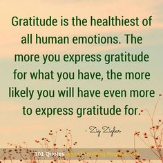 The more you express gratitude for what you have, the more likely you will have even more to express gratitude for.