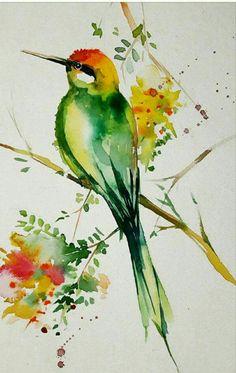 Watercolor Pictures, Watercolor Paintings Abstract, Watercolor Bird, Painting & Drawing, Watercolor Beginner, Photo D Art, Bird Drawings, Bird Art, Watercolours