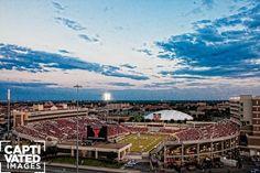 dream of having season tickets atleast one year Texas Tech Football, Texas Tech Red Raiders, Texas Tech University, Season Ticket, Iowa State, Texas Rangers, West Virginia, Trek, Paris Skyline