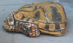 Painted Rocks, Turtle, Animals, Turtles, Animales, Animaux, Tortoise, Painted Pebbles, Animal