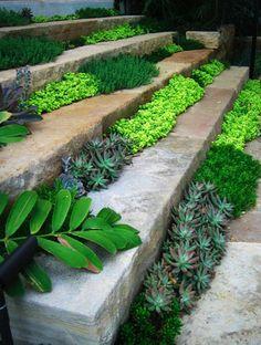 Prodigious Garden design front yard,Garden ideas for shade and Garden landscaping ireland. Garden Steps, Garden Paths, Garden Art, Garden Landscaping, Landscaping Ideas, Garden Kids, Easy Garden, Herb Garden, Vegetable Garden