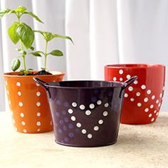 Pencil Painted Flower Pots - Don't give Mom a plant straight off the shelf this Mother's Day! Show your thoughtfulness by picking up one of the many colorful flower pots at Dollar Tree and easily creating a custom polka-dot pattern that will be cherished for years to come.