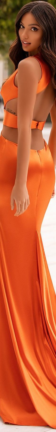 ❈Téa Tosh❈ #AandNLuxe #teatosh #VeridianaAssunçã Lobster Party, Orange Color, Label, Formal Dresses, Fashion, Formal Gowns, Moda, Fashion Styles, Formal Dress