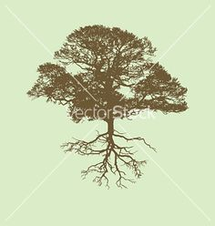 Tree+silhouette+vector+26757+-+by+nezabarom on VectorStock®