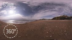 Join a fossil hunt on the Jurassic Coast in Dorset. As you explore Charmouth Beach, you'll get tips on what fossils to look out for. Fundraising Activities, Home Activities, Charmouth Beach, Fossil Hunting, Jurassic Coast, Natural History Museum, Fun Challenges, North Africa, Fossils