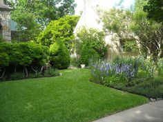 Nice English garden style in central Austin.